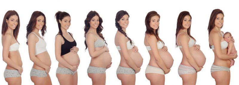 Les différentes évolutions dans la grossesse d'une femme