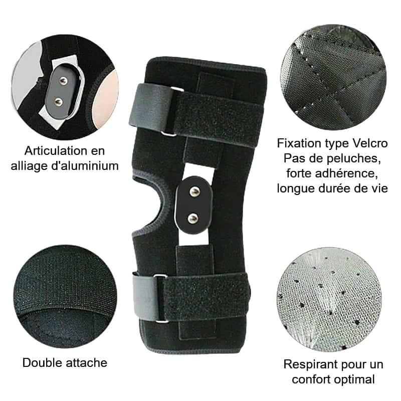 genouillere ligaments