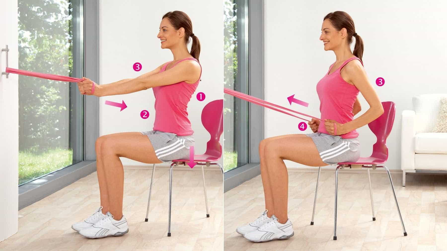 Entraînement des muscles du dos long