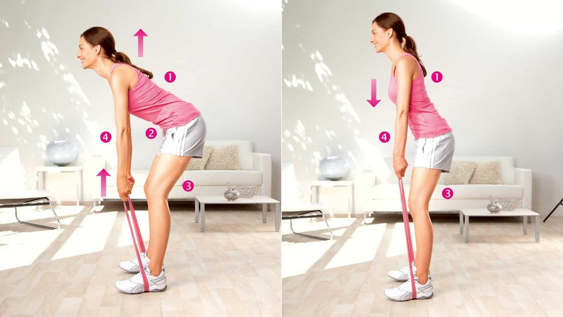 Extension du tronc - entraînement des muscles du bas du dos